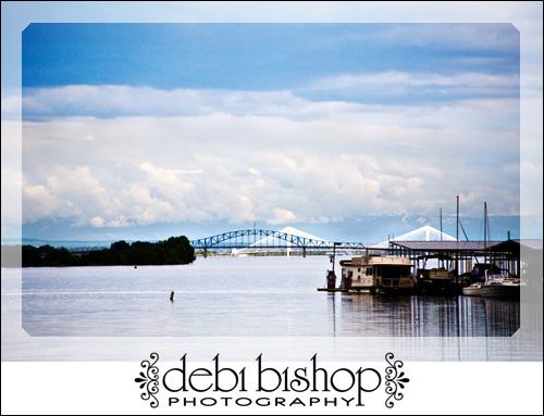 Cable Bridge & Blue Bridge from Bateman Island